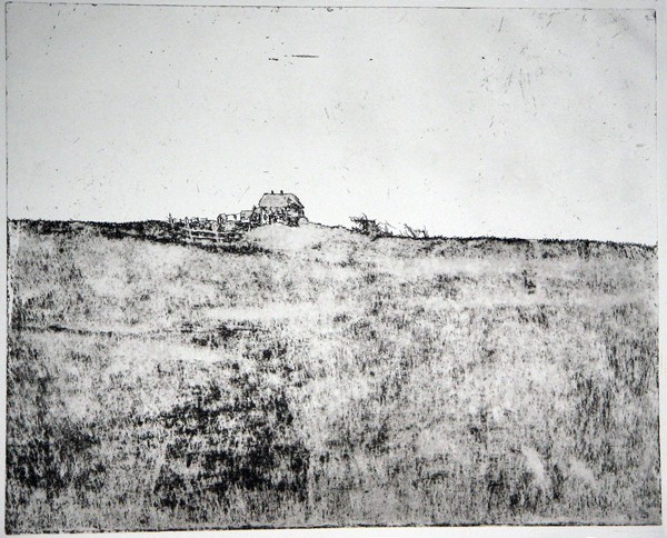 American Landscape, 50x60.etching - Copy-355bf32c75