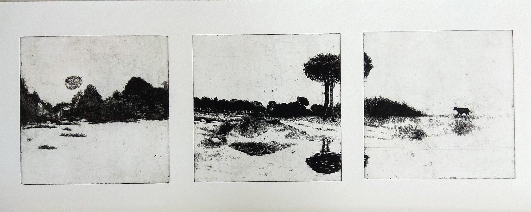 Polish landscape triptych